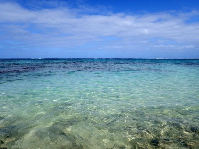 湛江地貌演变:6亿年前是一片浅海,海南岛曾是雷州半岛的延伸..